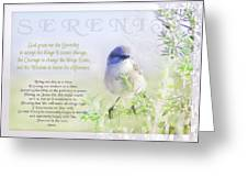 Serenity Prayer Greeting Card by Holly Kempe