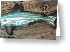 Shark Abstract Metal Wall Art Greeting Card by Robert Blackwell