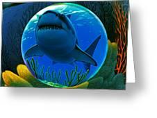 Shark World  Greeting Card by Robin Moline