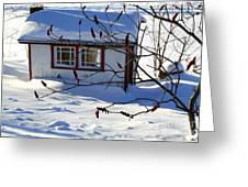Shed In Winter Greeting Card by Sophie Vigneault