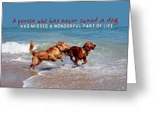 Sheer Joy Quote Greeting Card by JAMART Photography