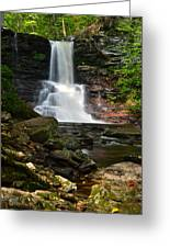 Sheldon Reynolds Greeting Card by Frozen in Time Fine Art Photography