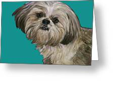 Shih Tzu On Turquoise Greeting Card by Dale Moses
