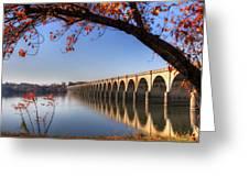 Shipoke In Autumn Greeting Card by Lori Deiter