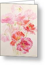 Shirley Poppies Greeting Card by Joan Thewsey