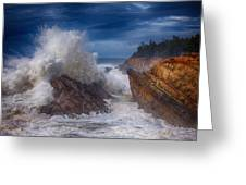 Shore Acre Storm Greeting Card by Darren  White