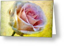 Shy Underneath Greeting Card by RC DeWinter