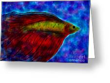 Siamese Fighting Fish II Greeting Card by Anita Lewis