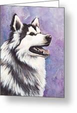 Siberian Husky Greeting Card by Darlene Fletcher