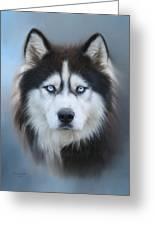 Siberian Husky Greeting Card by Lena Auxier