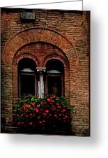 Sienna Window Greeting Card by Patrick J Osborne