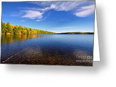 Silent Lake 4 Greeting Card by Charline Xia