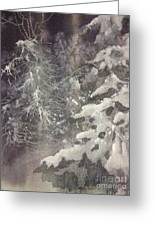Silent Night Greeting Card by Elizabeth Carr