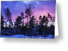 Silhouette Of Trees During A Colourful Greeting Card by Jacques Laurent