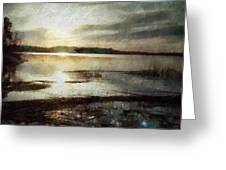 Silver morning Greeting Card by Gun Legler