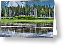 Silver Reflections Greeting Card by Linda Sannuti