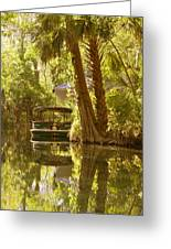Silver Springs Glass Bottom Boats Greeting Card by Christine Till