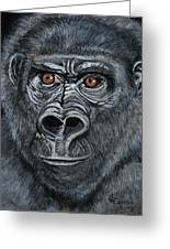 Silverback Greeting Card by Janis  Cornish