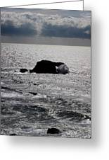 Silvery Ocean Sheen Greeting Card by Wernher Krutein