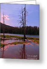 Simple Beauty Of Yellowstone Greeting Card by John Malone