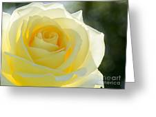 Simplicity Greeting Card by Sabrina L Ryan