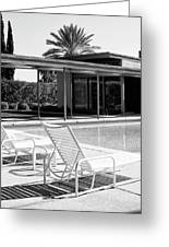 Sinatra Pool Bw Palm Springs Greeting Card by William Dey