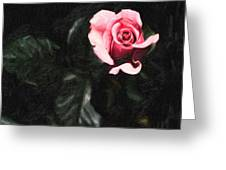Single Pink Rose Greeting Card by MotionAge Designs