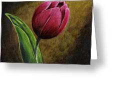 Single Tulip Greeting Card by Jesslyn Fraser