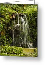 Sintra Waterfall Greeting Card by Deborah Smolinske