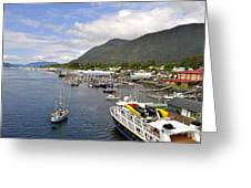 Sitka Channel Greeting Card by Cathy Mahnke