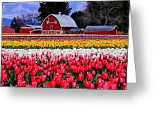 Skagit Valley Greeting Card by Benjamin Yeager