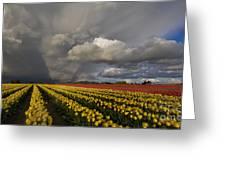 Skagit Valley Storm Greeting Card by Mike Reid
