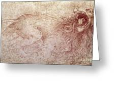 Sketch Of A Roaring Lion Greeting Card by Leonardo Da Vinci