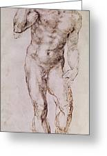 Sketch Of David With His Sling Greeting Card by Michelangelo Buonarroti