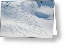 Ski Tracks In The Snow On A Mountain Greeting Card by Keith Levit