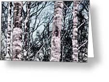 Skutskar 005 Greeting Card by Per Lidvall
