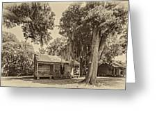 Slave Quarters Sepia Greeting Card by Steve Harrington