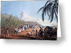 Slaves Cutting The Cane, From Ten Views Greeting Card by William Clark