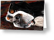 Sleeping Dogs Lie Greeting Card by Liane Weyers