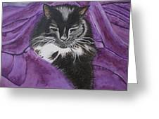 Sleepy Cat Greeting Card by Carol De Bruyn
