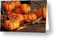 Small pumpkins with wood bucket  Greeting Card by Sandra Cunningham