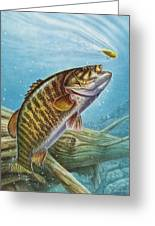 Smallmouth Bass Greeting Card by JQ Licensing