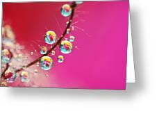 Smoking Pink Drops Greeting Card by Sharon Johnstone