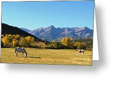 Sneffels Range In The San Juan Mountains Of South West Colorado Greeting Card by Alex Cassels