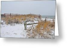 Snow And Sand Greeting Card by Catherine Reusch  Daley