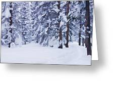 Snow-dappled Woods Greeting Card by Don Schwartz