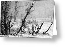 Snow Day 1 Greeting Card by Joanna Pippen