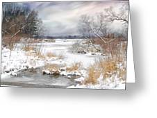 Snow Lake Greeting Card by Mary Timman