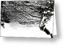Snow Scene 5 Greeting Card by Patrick J Murphy