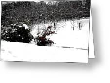 Snow Scene 6 Greeting Card by Patrick J Murphy
